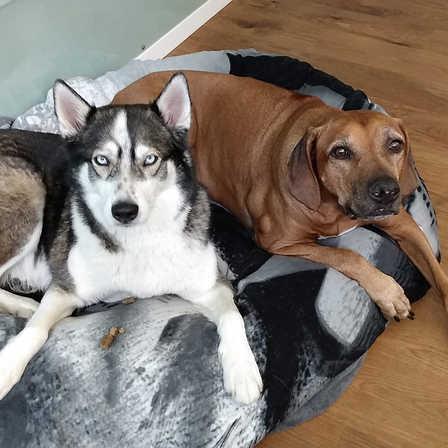 Lishka & Amani
